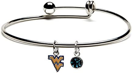 Virginia University Stainless Mountaineers Officially product image