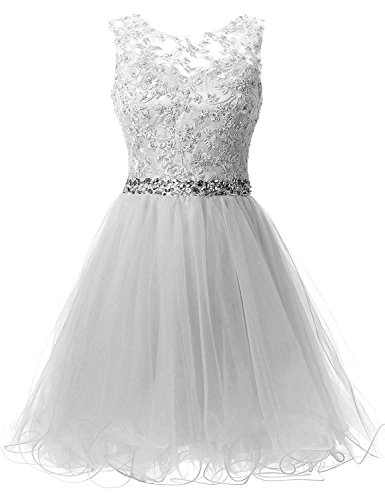 HEIMO Women's Lace Beaded Homecoming Dresses Short Sequined Appliques Prom Gowns H122 22W Silver