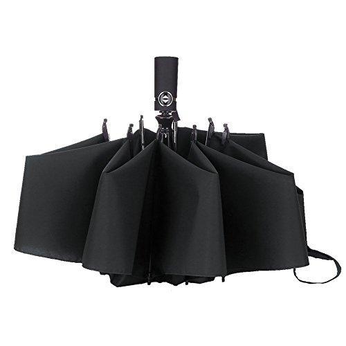 Umbrella Windproof Compact Folding LANBRELLA product image