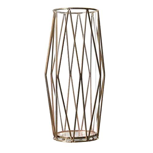 (Pangxiannv Nordic Metal Light Luxury Style Creative Hydroponic Container Vase Ornament Cylinder Vases Large Glass Vase Hurricane Vase Wholesale Vases Very Tall Floor Vases)