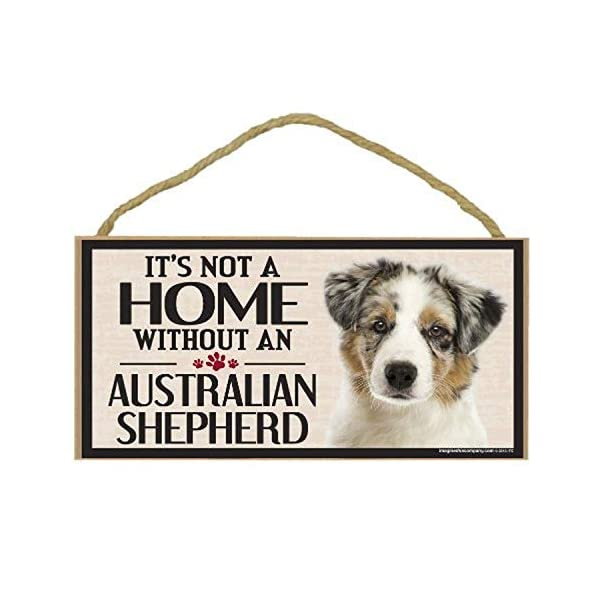 Imagine This Wood Sign for Australian Shepherd Dog Breeds 1