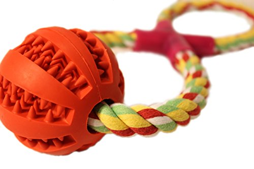 Indestructible Dog Toy Ball ChewersTreat product image