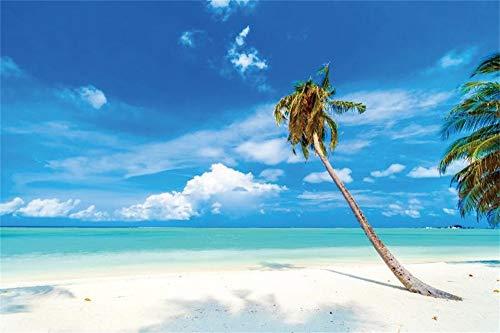 AOFOTO 9x6ft Tropical Blue Sky Backdrop for Wedding Party Seaside Summer Beach Landscape Palm Trees Seascape Photoshoot Background Sandy Shore Sea Bay Photo Studio Props Vinyl Poster Wallpaper