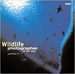Amazon.com: Wildlife Photographer of the Year: Portfolio 11 (9780563534488): BBC Books: Books
