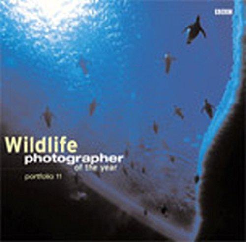 Wildlife Photographer of the Year: Portfolio 11