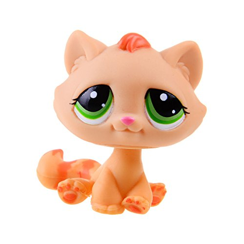[Rare Hasbro Littlest Pet Shop LPS Orange Cat Kitty Gift Toy Animals] (Spider Costume For Dogs Video)