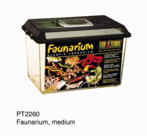 - Exo Terra Faunarium Plastic Terranium (Medium)