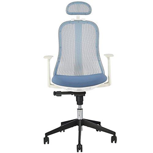 Merax Ergonomic Office Chair High Back Mesh Home Desk Chair Modern Executive Home Office Chairs with Adjustable Headrest (Blue) - Modern Executive Desks