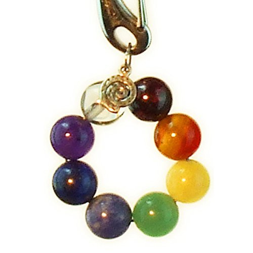 (Dog Collar Charm, SHOCK Your Chakra for all Pets)