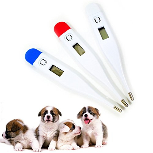 Zeroyoyo Veterinary Pet Digital Thermometer Animal/Livestock Oral Rectal and Underarm Use for Baby Adult Dog Puppy Cat Rabbit Kittens
