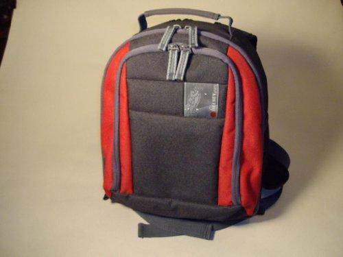 delsey-gopix-80-dslr-camera-bag-black-red