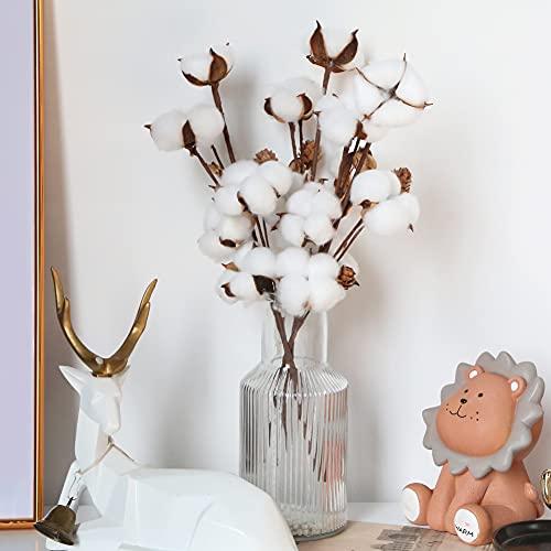 HAKACC Baumwolle Deko, 3 Stück Natürlich Getrocknete Baumwolle mit Baumwollschale und KiefernzapfenTrockenblumen Deko DIY Dekoration Home Party