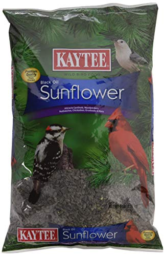 Kaytee Wild Bird Food Black Oil Sunflower - 5 Lb (Sunflower Wild Bird Seed)