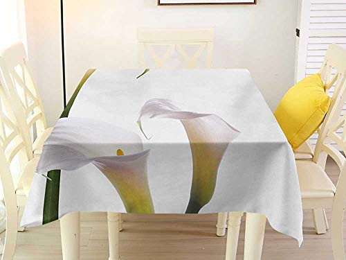 Square Tablecloth for 8 Chairs Flower Flourishing Calla Lilies on White Fresh Spring Bouquet Gentle Nature Theme Green White Yellow Pattern 70 x 70 Inch (Chair Calla)