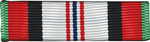 Campaign Medal Pin (Afghanistan Campaign Full Size Medal-Ribbon)