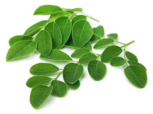 photo Wallpaper of Wild Foods-Wild Foods Moringa Leaf Powder, Raw Organic Single Origin-