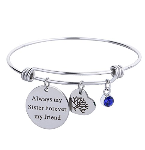 Bracelets Birthstone Inspirational Message Charm Always My Sister Forever My Friend Stainless Steel Expandable Wire Bangle for Women