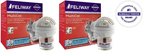 CEVA Animal Health 2 Pack of Feliway MultiCat Starter Kit for Cats, Each Kit Includes Diffuser and 48 ML Refill Vial