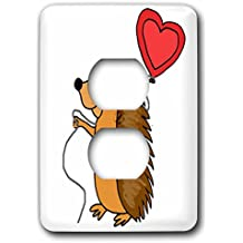 3dRose All Smiles Art Love - Funny Cool Hedgehog with Love Balloon Cartoon - Light Switch Covers - 2 plug outlet cover (lsp_265133_6)