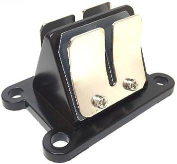 Membranblock Membrane Für Aprilia Rs Rx Rieju Rr 50 Minarelli Am6 Auto
