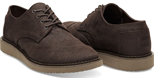 TOMS Mens Brogue Chocolate Brown Aviator Twill Oxford 8.5 D (M) ly7XK