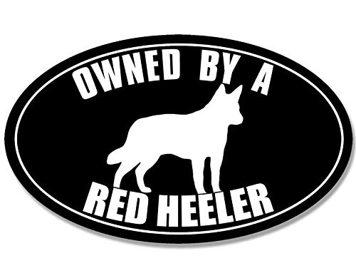 Oval Owned by A RED Heeler Sticker (Australian Cattle Dog Dingoes Collies ()