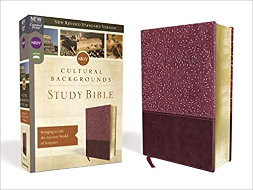 NRSV, Cultural Backgrounds Study Bible, Leathersoft