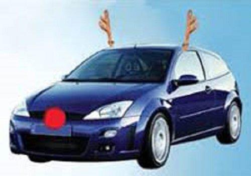 Car R (Reindeer Car Costume)