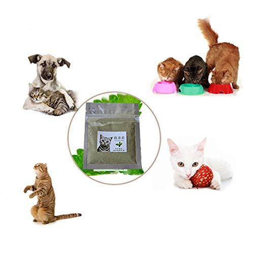 Amazon.com: Ball Cat Toy - Kittens Snacks Catnip Grass Natural Non Toxic Remover Cleaning Teeth Interesting Cat Toys Gatos - Automatic Soccer Hide Trees ...