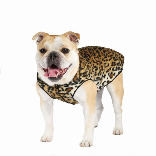 Gold Paw Series Gold Paw Print Fleece, Size 8, Leopard, My Pet Supplies