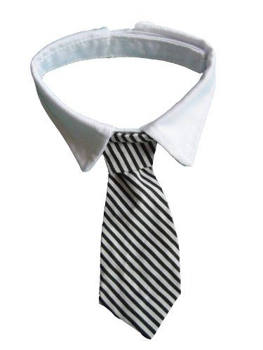 Striped Dog Tie - 3