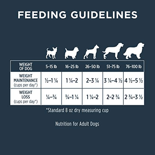 Instinct Raw Boost Healthy Weight Grain Free Recipe with Real Chicken Natural Dry Dog Food by Nature's Variety, 20 lb. Bag by Instinct (Image #8)
