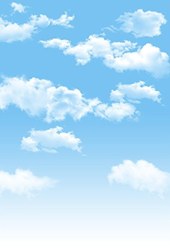 AOFOTO 3x5ft Blue Sky Backdrops White Clouds Photo Shoot Background Photography Studio Props Digital Video Drop Baby Infant Kid Newborn Toddler Artistic Portrait -