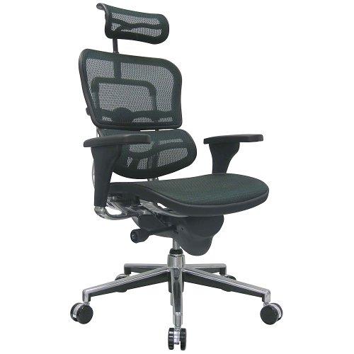 """Ergohuman Eurotech Mesh Chair - 18.1A 22.9"""" Seat Height - High-Back Chair with Headrest - Green - Green"""