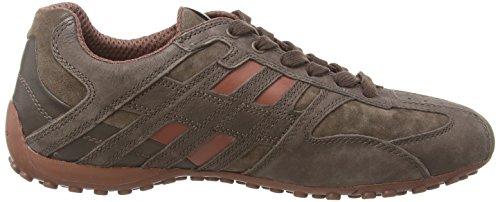 Basses Coffee Snake Sneakers Braun K Geox Homme Cinnamonc6m5h Uomo OgCqgxB