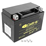 Caltric compatible with Agm Battery Honda Vt600C Vt-600C Shadow Vlx 600 1988 1989 1991-1997 1999-2003