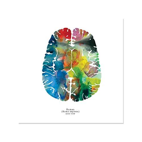 J. Sayuri Axial Human Brain Art - 12