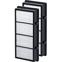 Holmes HAPF600D-U2 True HEPA Replacement Filter, 2 Pack, Filter B