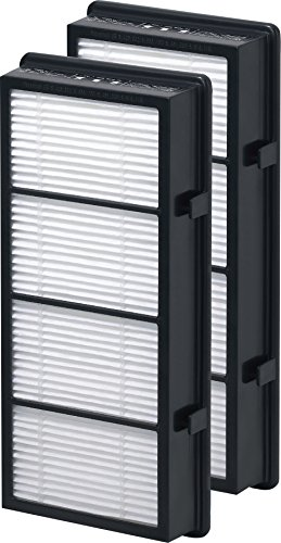 Holmes True HEPA Filter HAPF600D-U2, Filter B, 2 Pack - Hap726 Hepa Air Purifier