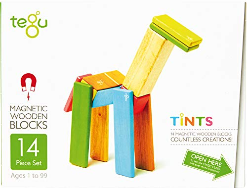 14 Piece Tegu Magnetic Wooden Block Set, - Handmade Magnet Wooden