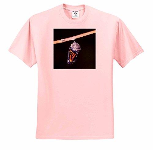 danita-delimont-butterfly-monarch-danaus-plexippus-pupa-chrysalis-during-emergence-01-t-shirts-adult