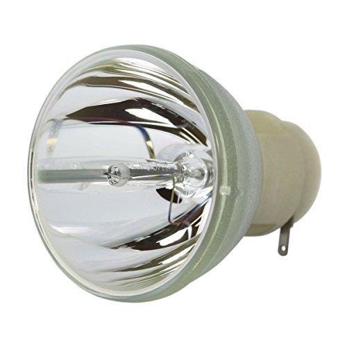 - LYTIO Economy for ViewSonic RLC-061 Projector Lamp (Bulb Only) RLC 061
