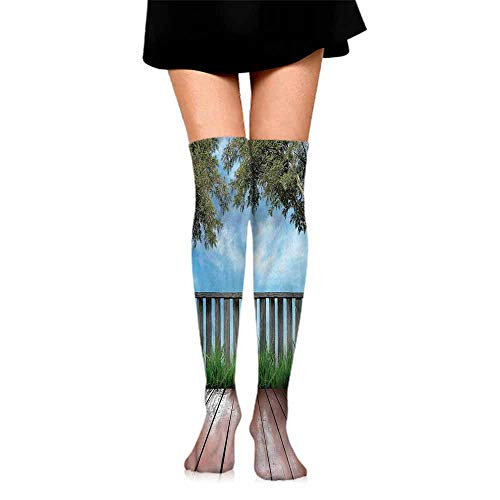 - Summer 2019 Patio,Olive Trees in Open Sky Photo,socks for men size 13-15