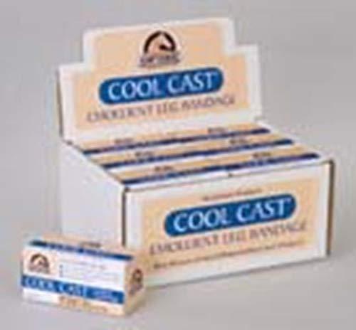 - Hawthorne Products 6 348082 Cool Cast Emollient Leg Bandage, 3