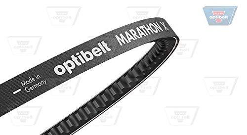 Optibelt AVX 10 x 1375 Optibelt-Marathon 1 Keilriemen