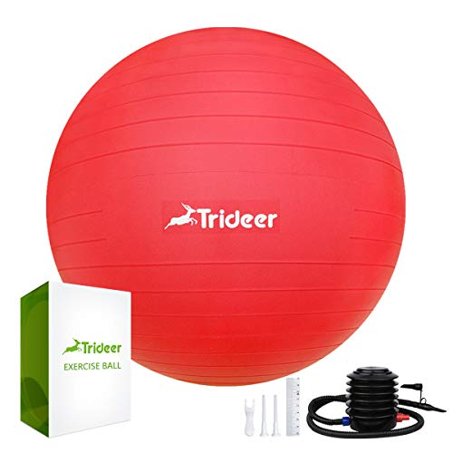 (Exercise Ball, Yoga Ball, Birthing Ball with Quick Pump, Anti-Burst & Extra Thick, Heavy Duty Ball Chair 45cm 55cm 65cm 75cm Stability Ball Supports 2200lbs (Office&Home) (Red, 65cm))