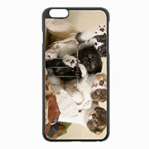 iPhone 6 Plus Black Hardshell Case 5.5inch - kittens shopping many interesting Desin Images Protector Back Cover
