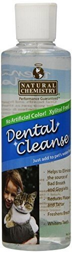 Dental Cleanse For Cats