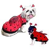 Dog Costume Ladybug Costumes Dress Your Dogs Like Lady Bugs Insects