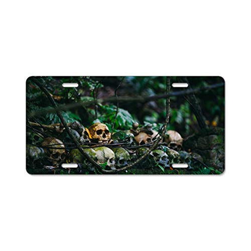Elvira Jasper Best Design Cool Halloween Skull Metal License Plate for Car (New) 12